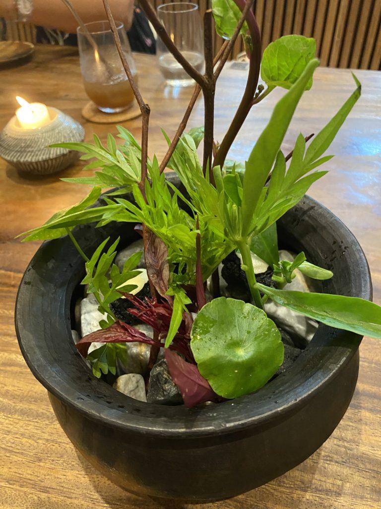 Hapag, vegetable garden