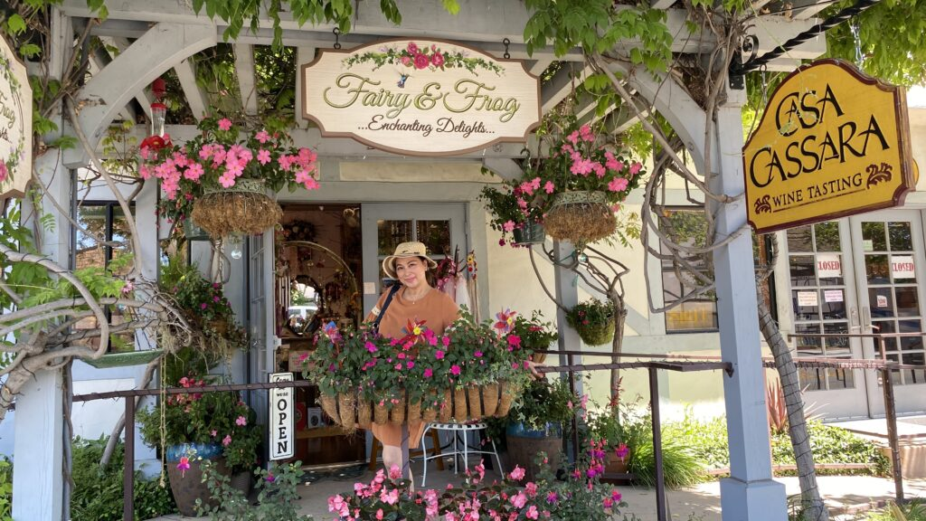 Fairy and Frog shop