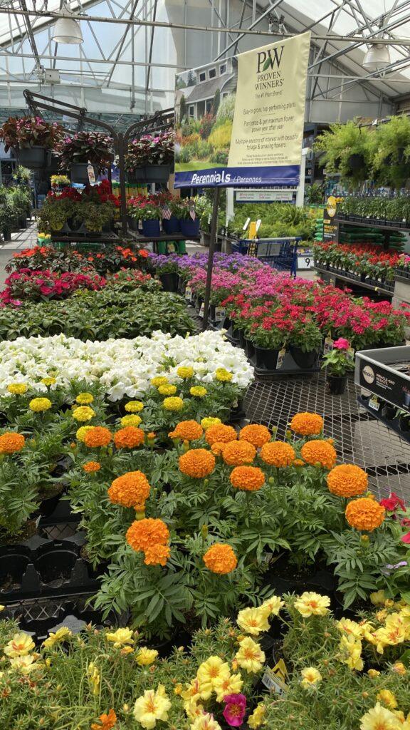 Home Depot garden section